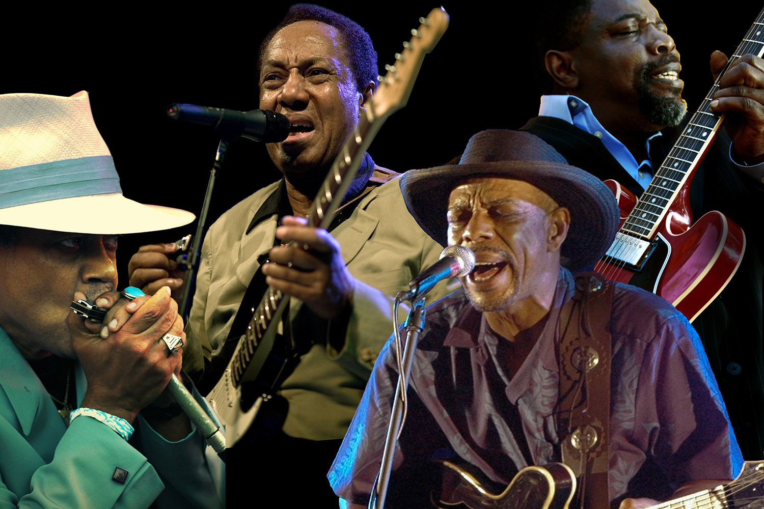 Chicago Blues A LIVING HISTORY
